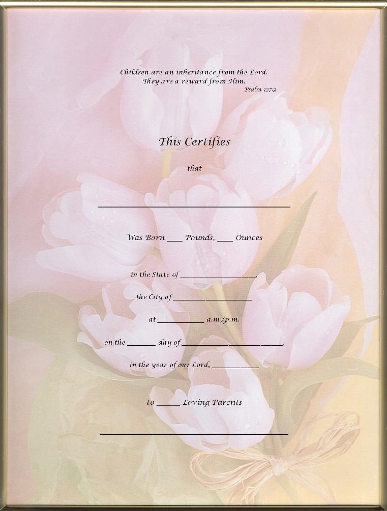 Pink Blank Birth Certificate - WeSharePics