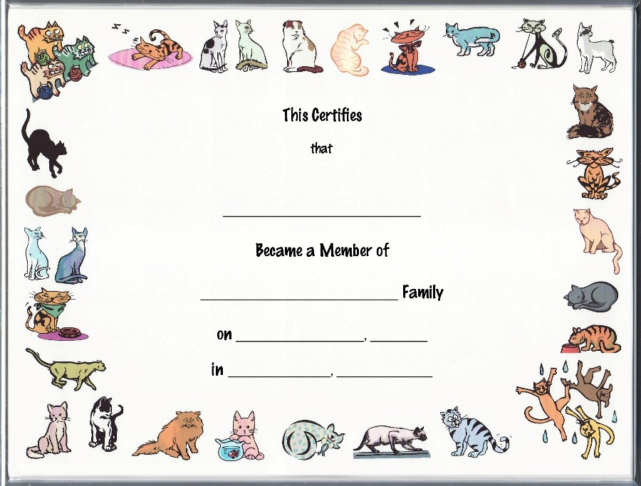 Keepsake Cat Adoption 8.5 X 11 Inch Certificate - Cartoon Cat