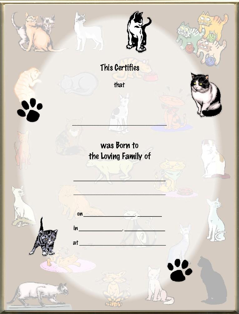 Keepsake Cat Birth 8 5 X 11 Inch Certificate Cat Collage