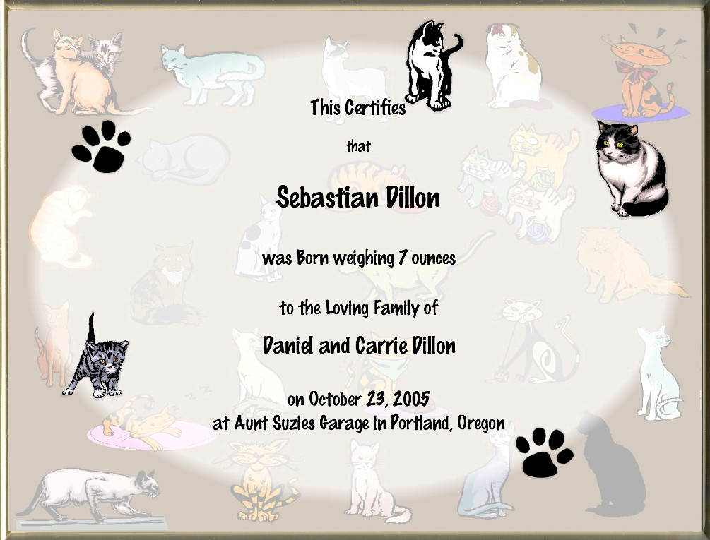 cat birth certificate  Cat Birth Certificates Page