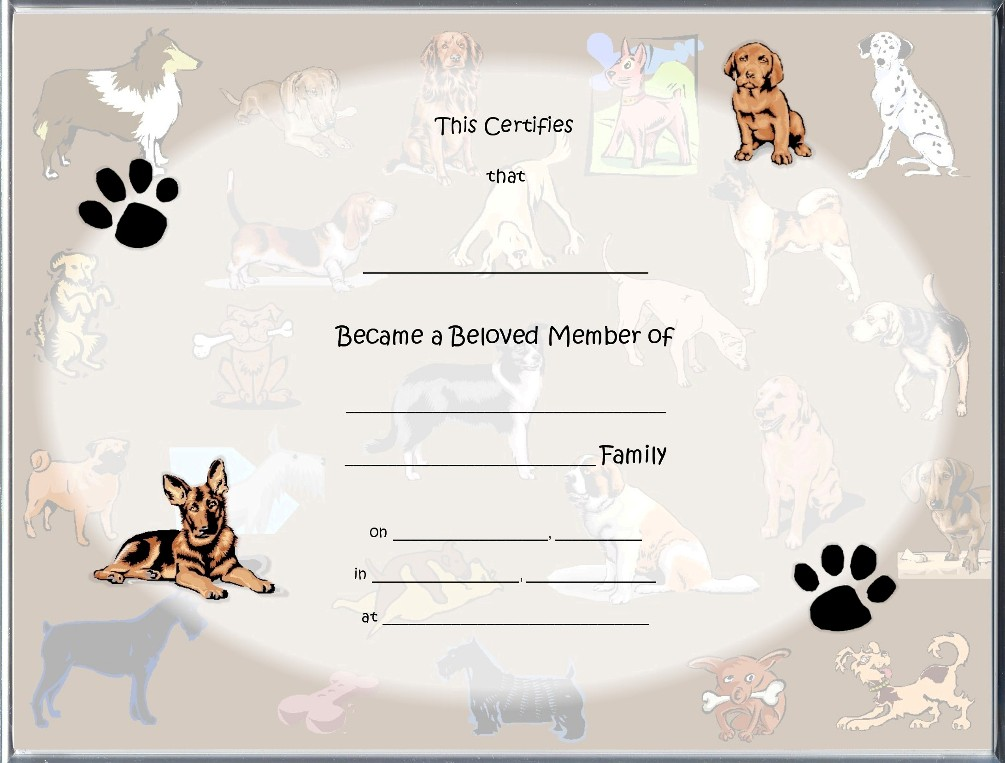 Images of pet adoption certificate for sc dog adoption certificates main page yadclub Images