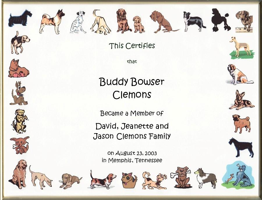 Dog Adoption Certificates Main Page