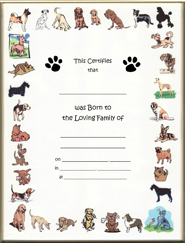Dog certificates northurthwall dog certificates yadclub Gallery
