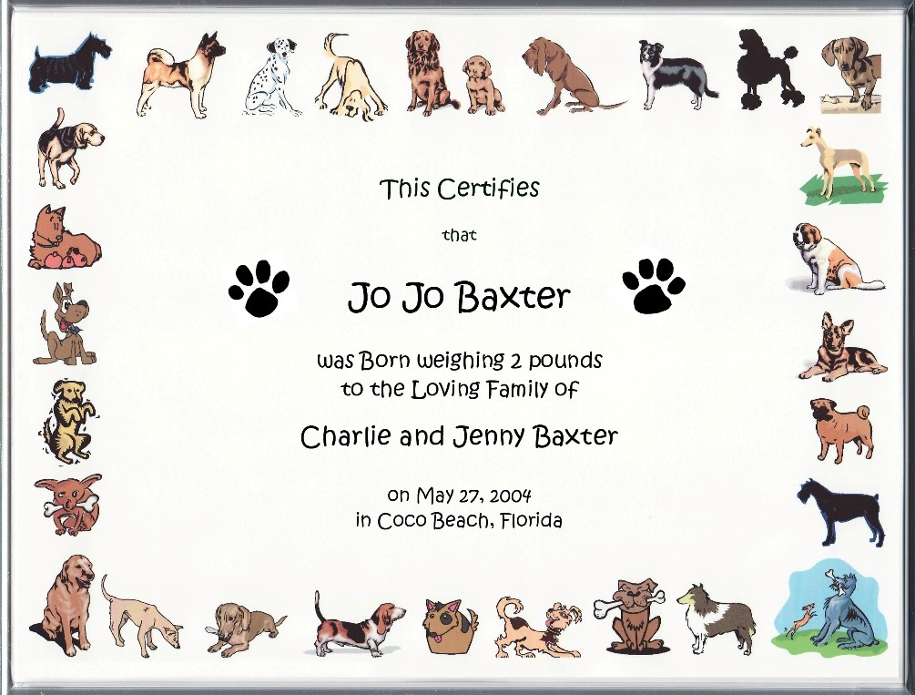 Dog Birth Certificate Idealstalist