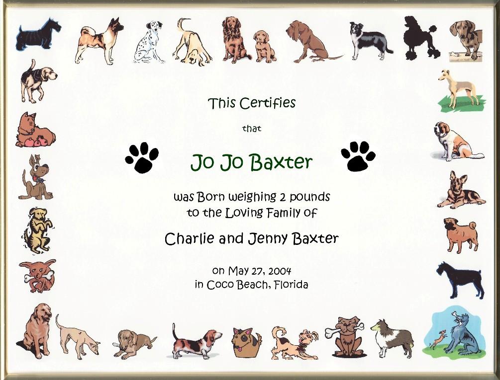 Keepsake Dog Birth 8.5 x 11 inch Certificate - Cartoon Dog Border ...