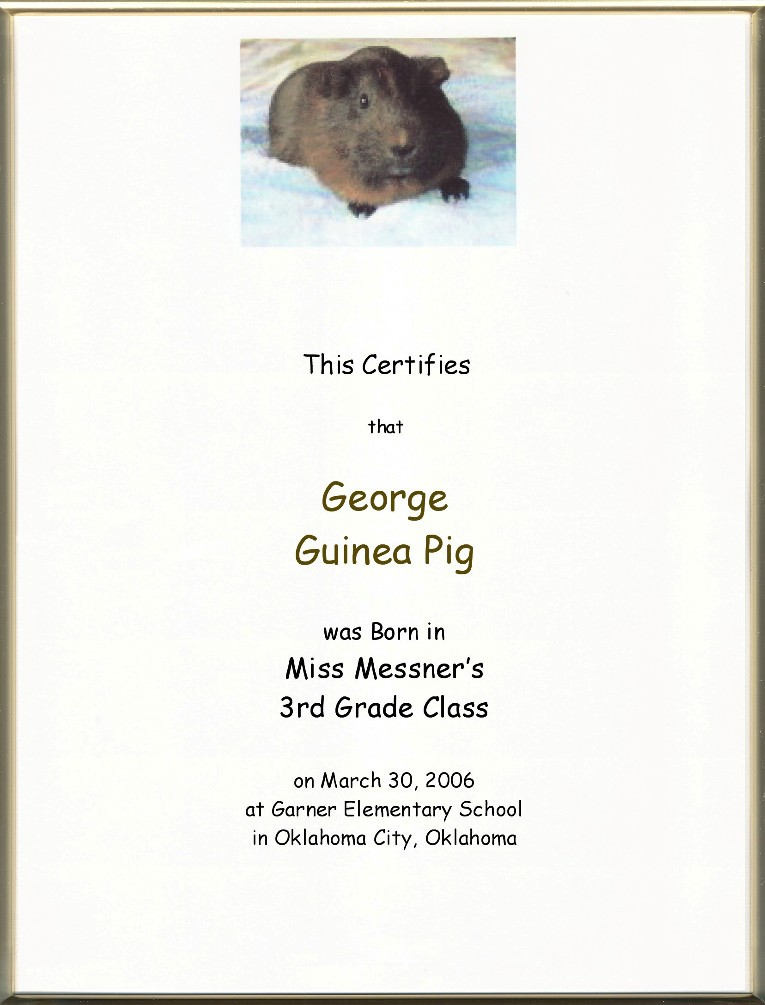 Keepsake Pet Birth 85 X 11 Inch Certificate Your Pet Picture
